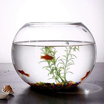 JIANGU, pecera, vaso creativo redondo pecera, salón pequeño cuenco de pez dorado,