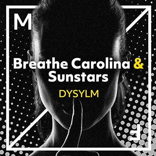 Dysylm