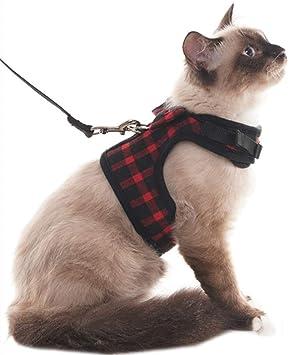 Scirokko Arnés para gato, a prueba de escapes, regulable, chaleco con correa: Amazon.es: Productos para mascotas