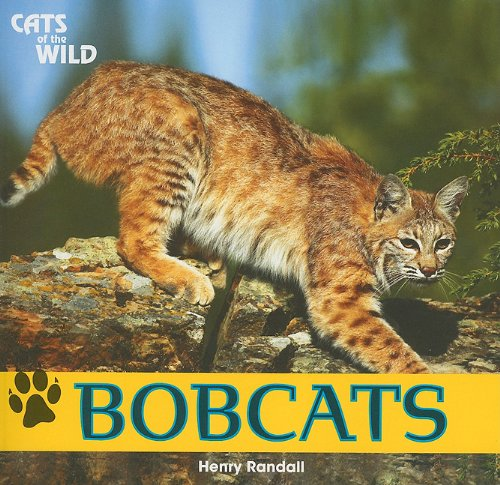 bobcats-cats-of-the-wild-paperback