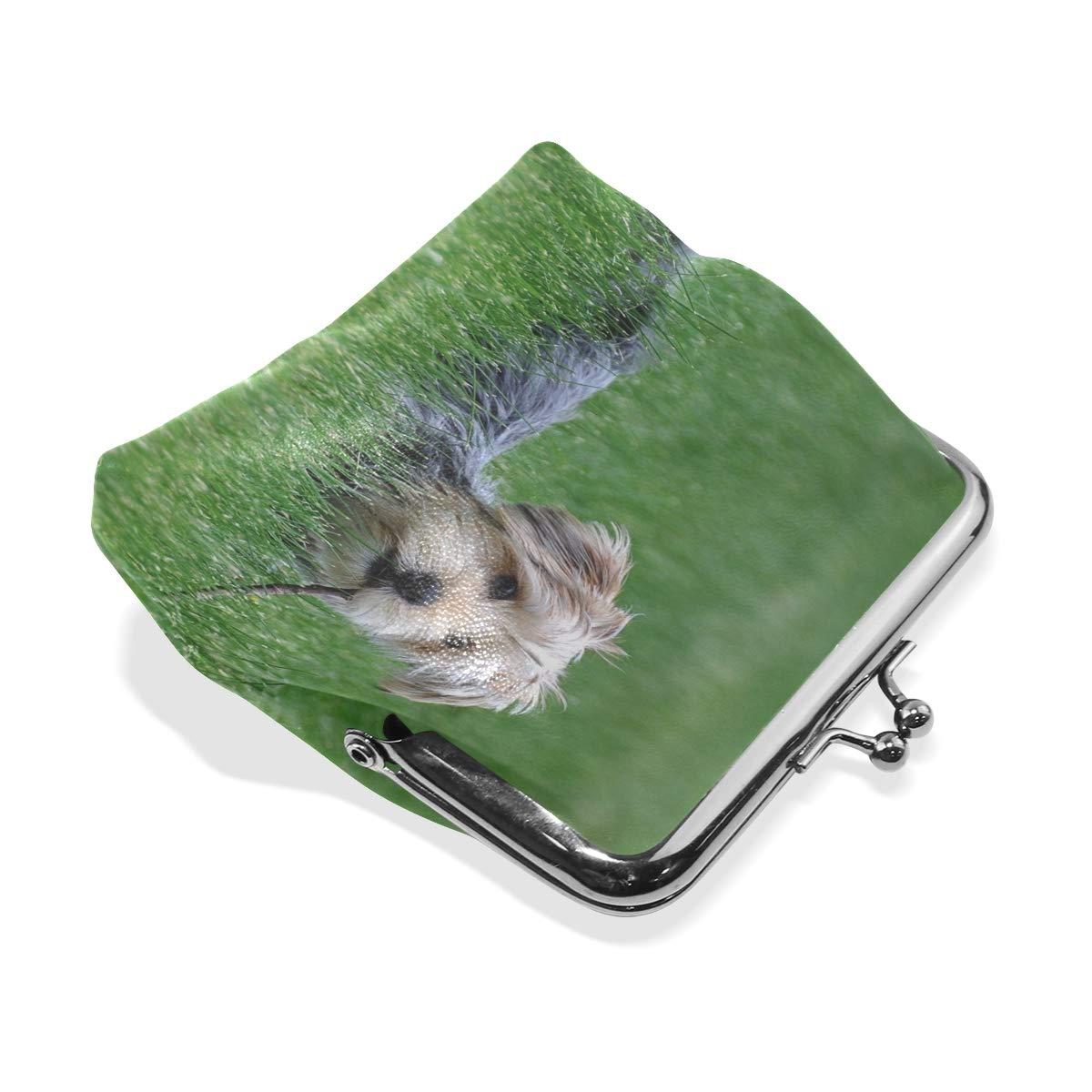 Rh Studio Coin Purse Dog Grass Walk Yorkshire Terrier Print Wallet Exquisite Clasp Coin Purse Girls Women Clutch Handbag
