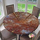 """Mikihome Chateau Easy-Care Cloth Tablecloth Fall Birch Trees Rural Oak in Woodland Peace Park Foliage Orange for Home, Party, Wedding 50""""-55"""" Round (Elastic Edge)"""