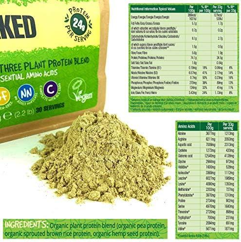BodyMe Mezcla de Proteina Vegana Organica en Polvo | Naked Natural | 1kg | Sin Edulcorante | Baja Carb | Sin Gluten | 3 Proteinas Veganas | 24g ...