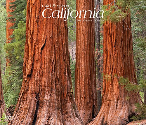 California, Wild & Scenic 2019 12 x 14 Inch Monthly Deluxe Wall Calendar, USA United States of America West Coast State Nature (Multilingual Edition) ()