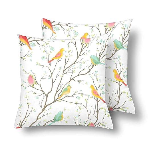 URDER Funda de cojín con diseño de pájaros de Colores sin ...
