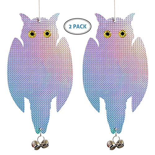 iNeibo Bird Repellent Owl Bird Scared - Simple Reflective Control Device| Double Side Bird Deterrent- Holographic Reflective Woodpecker Deterrent FOR Gardens, Greenhouse Docks and Boats (2-Pack) Big Bird Products Bird