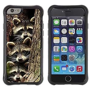 LASTONE PHONE CASE / Suave Silicona Caso Carcasa de Caucho Funda para Apple Iphone 6 / cute raccoon funny family pet bandit
