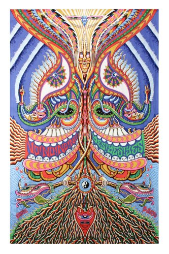 Sunshine Joy 3D Yes Yes Yes No No No Tapestry Hanging Wall Art Beach Wrap    Artwork By Chris Dyer   Amazing 3 D Effects (60X90 Inches)