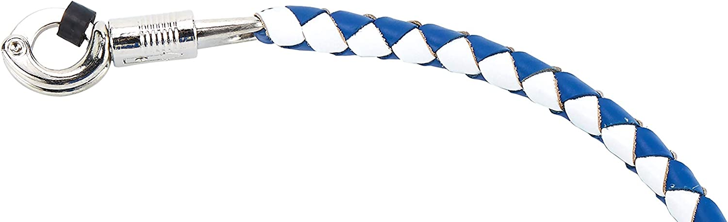42 Long 1//2 Diameter Blue and White Motorcycle Get Back Whip with NO 10 Pool Ball