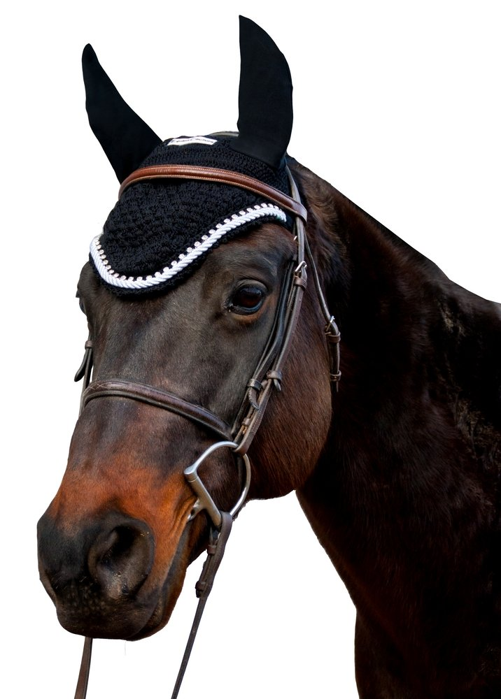 Equine Couture Fly Bonnet with Silver Rope & Crystals - Pony Color - Black, Size - Cob by Equine Couture