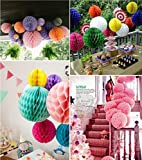 SwirlColor Elegant Honeycomb Flower Ball Pull Paper Flower Balls for Wedding Garden Party Outdoor Decoration 12 Pcs - Hot Pink, White