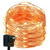 DecorNova 120 LEDs 40 Feet Flexible Copper Wire String Fairy Lights with 3V Adapter, 39.4, Warm White