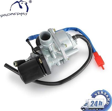 Dromedary Vergaser Carburetor Keeway Agm Motor Atu Spin Jonway 17 5 Mm Motowell Crogen Auto