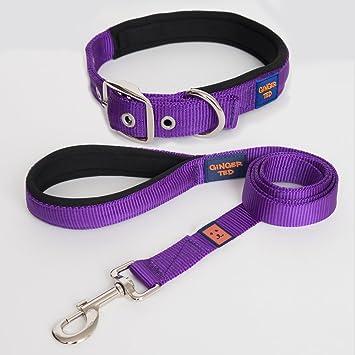 Strong Rope Dog Lead with Premium Dog Collar Comfort and Reflective for Medium Large Dog U-picks Dog Lead and Collar Set Purple set