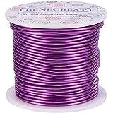 BENECREAT 12 17 18 Gauge Aluminum Wire (12 Gauge,100FT) Anodized Jewelry Craft Making Beading Floral Colored Aluminum…