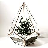 Hashcart Pyramid Glass Terrarium, Eloquent Design, Plants, Succulents, Votive Candle Holder