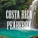 Costa Rica Peaberry Coffee, Ground, Medium Roast, Fresh Roasted, 16-ounce