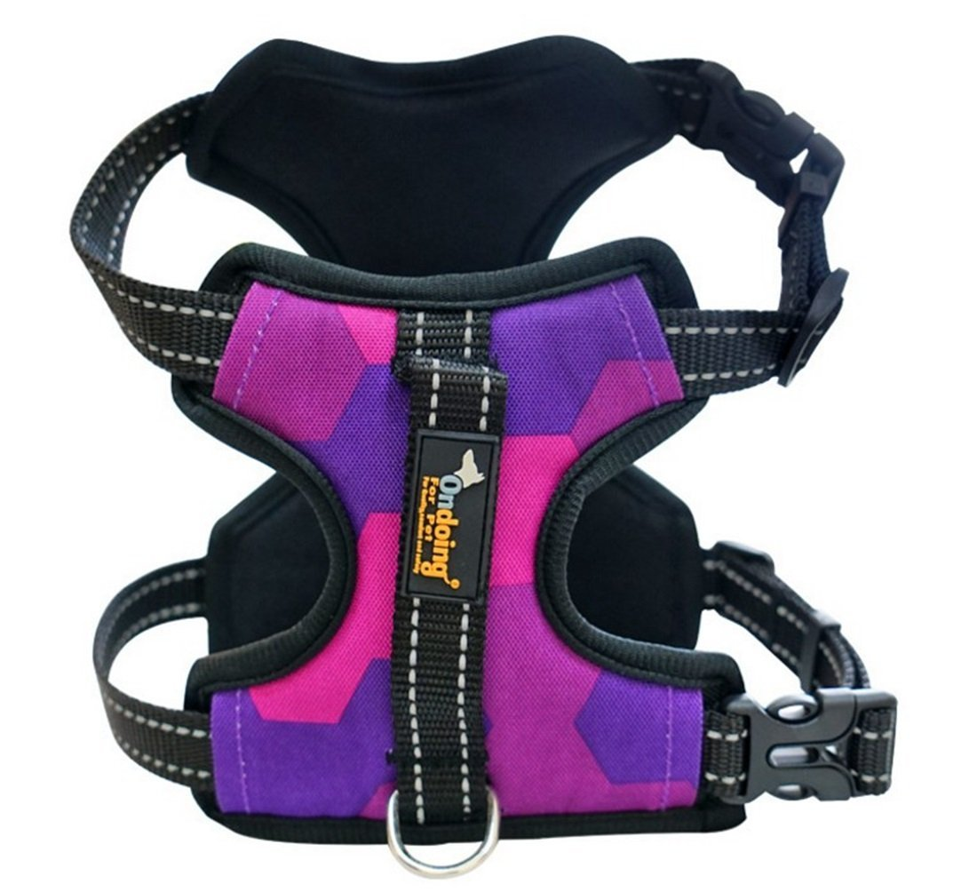 TLMY Pet Explosion-proof Storage Bag Traction Rope Pet Supplies Pet Chain (color   PURPLE, Size   S)