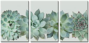 "wall26 3 Panel Canvas Wall Art - Closeup Tropical Succulent Plant - Giclee Print Gallery Wrap Modern Home Art Ready to Hang - 16""x24"" x 3 Panels"