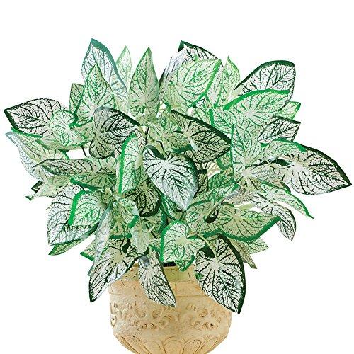 Artificial Houseplant Maranta Prayer Plant Picks Stems, Set of 3 - for Indoor Outdoor Use ()