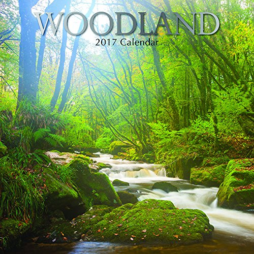 """Free Majestic Forrests and Pathways - Woodland 2017 Monthly Wall Calendar, 12"""" x 12"""""""