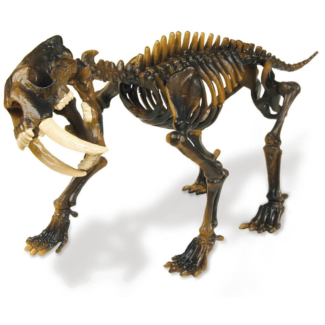 Geoworld Dino Excavation Kit–cl166K Imitation Game–Duo Pack–Trex and Sabre Tooth Tiger 23211138