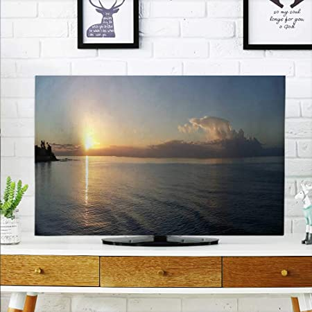 aolankaili - Silueta para Proteger tu televisor de la luz del Sol ...