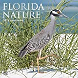 Florida Nature 2018 12 x 12 Inch Monthly Square Wall Calendar with Foil-Stamped Cover, USA United States of America Southeast State Nature