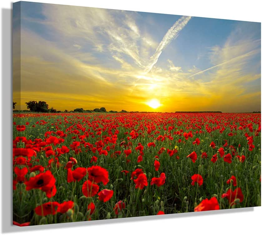 N/H Wall Art Poppy Flower Restaurant Bathroom Decor for Wall - Brilliant Colors Printed on Canvas Living Room Office Painting Studio Mural 12 x 16 inch x1 Panel