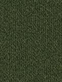 Regia Darning Thread 5 Gram Card - Dark Green