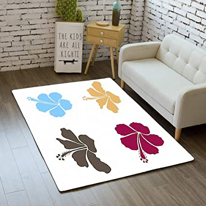 Amazon.com : iBathRugs Door Mat Indoor Area Rugs Living Room ...