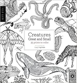 Field Guide Creatures Great And Small 35 Prints To Color Valerie Davies Lucy Engelman 9781847806970 Amazon Books