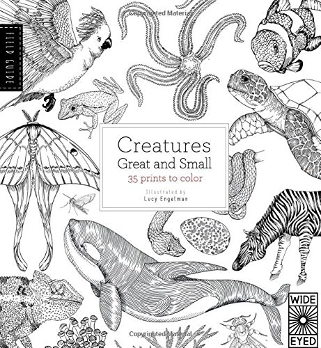 28 CREATURES GREAT AND SMALL This Coloring Book