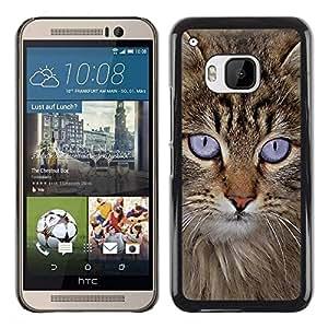 Be Good Phone Accessory // Dura Cáscara cubierta Protectora Caso Carcasa Funda de Protección para HTC One M9 // Maine Coon American Longhair Cat