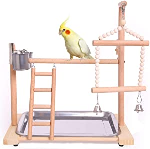 QBLEEV Bird Playground Birdcage Playstand Parrot Play Gym Parakeet Cage Decor Budgie Perch Stand with Feeder Seed Cups Ladder Hanging Swing Chew Toys Conure Macaw Cockatiel Finch Small Animals