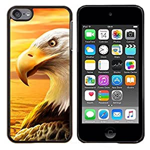 For Apple iPod Touch 6 6th Generation - Eagle Royal Flying Desert Bird Magnificent Case Cover Protection Design Ultra Slim Snap on Hard Plastic - God Garden -