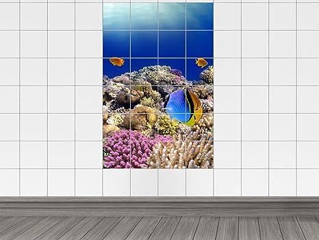 Piastrelle adesivo piastrelle immagine mondo subacqueo con coralli