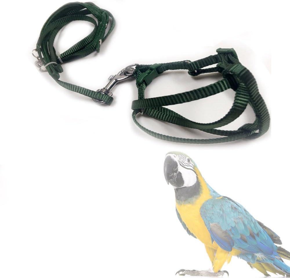 ASOCEA Pluma Ajustable Correa pájaro arnés y Correa para pequeños Loros Razas Medianas