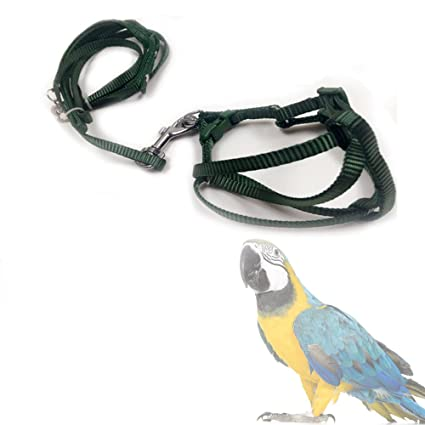 61WPiDkSnAL._SX425_ amazon com asocea adjustable feather tether bird harness and leash
