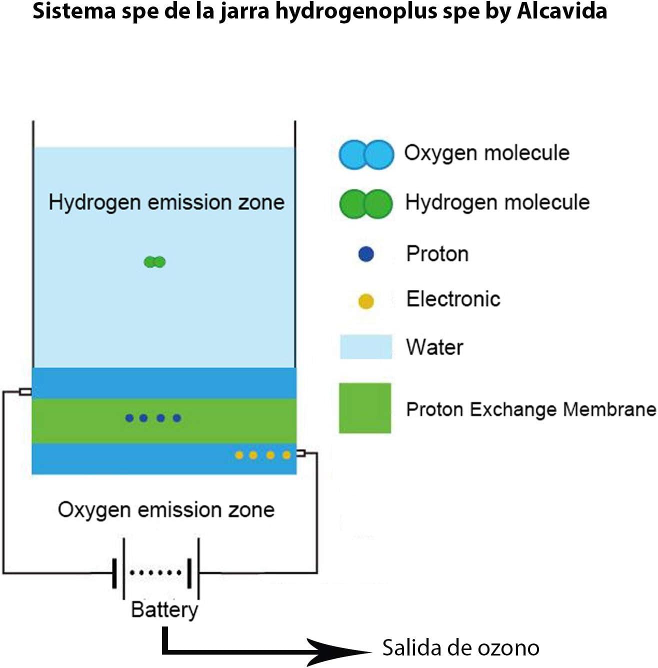 Hydrogenoplus hidrogenador de agua nueva generación con sistema SPE-PEM crea tu Agua hidrogenada en casa o en la oficina: Amazon.es: Hogar