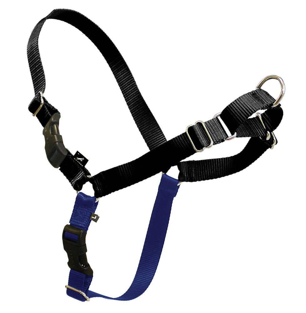 PetSafe Premier ECO Easy Walk Dog Harness, Large, Cosmic Black