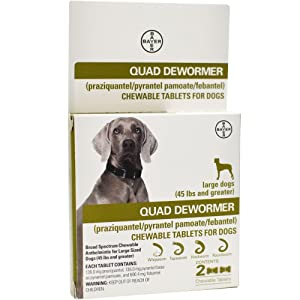Quad Dewormer for Large Dogs