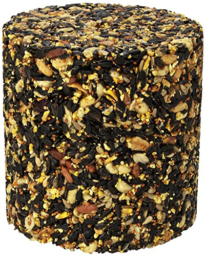 Pine Tree 8006 Fruit Berry Nut Classic Seed Log, 68-Ounce