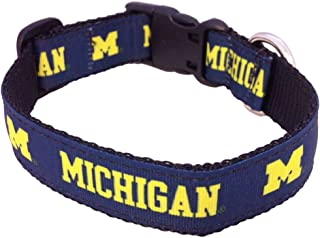 product image for NCAA Michigan Wolverines Collegiate Dog Collar, Large