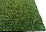 PZG Artificial Grass Rug w/ Drainage Holes & Rubber Backing | 2-Tone Realistic Synthetic Grass Mat | Extra-Heavy & Soft Pet Turf | Lead-Free Fake Grass for Dogs or Outdoor Decor | Size: 12' x 6'