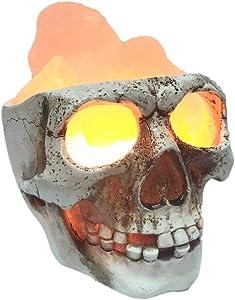 Lucktao 3D USB Skull Himalayan Salt Lamp, LED Adjustable Skull Lamp with Dimmer Switch,Best Ideal Gift,Holiday Gift Halloween Skull Light