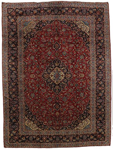 - Fantastic Traditional Antique Red Kashan Persian Style Rug Oriental Area Carpet 10X13