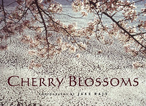 - Cherry Blossoms