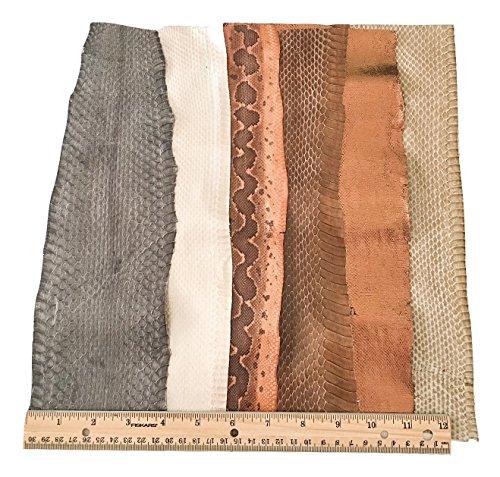 Buy python leather skin