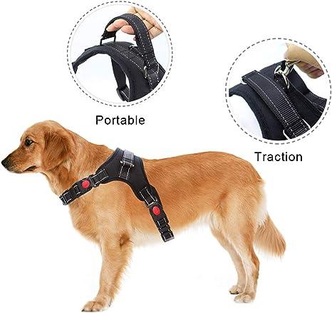 Arnés para perro - No tire de perro mascota Vet arnes ajustable ...